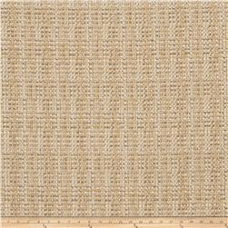 Fabricut Cashing Out Basketweave Sisal