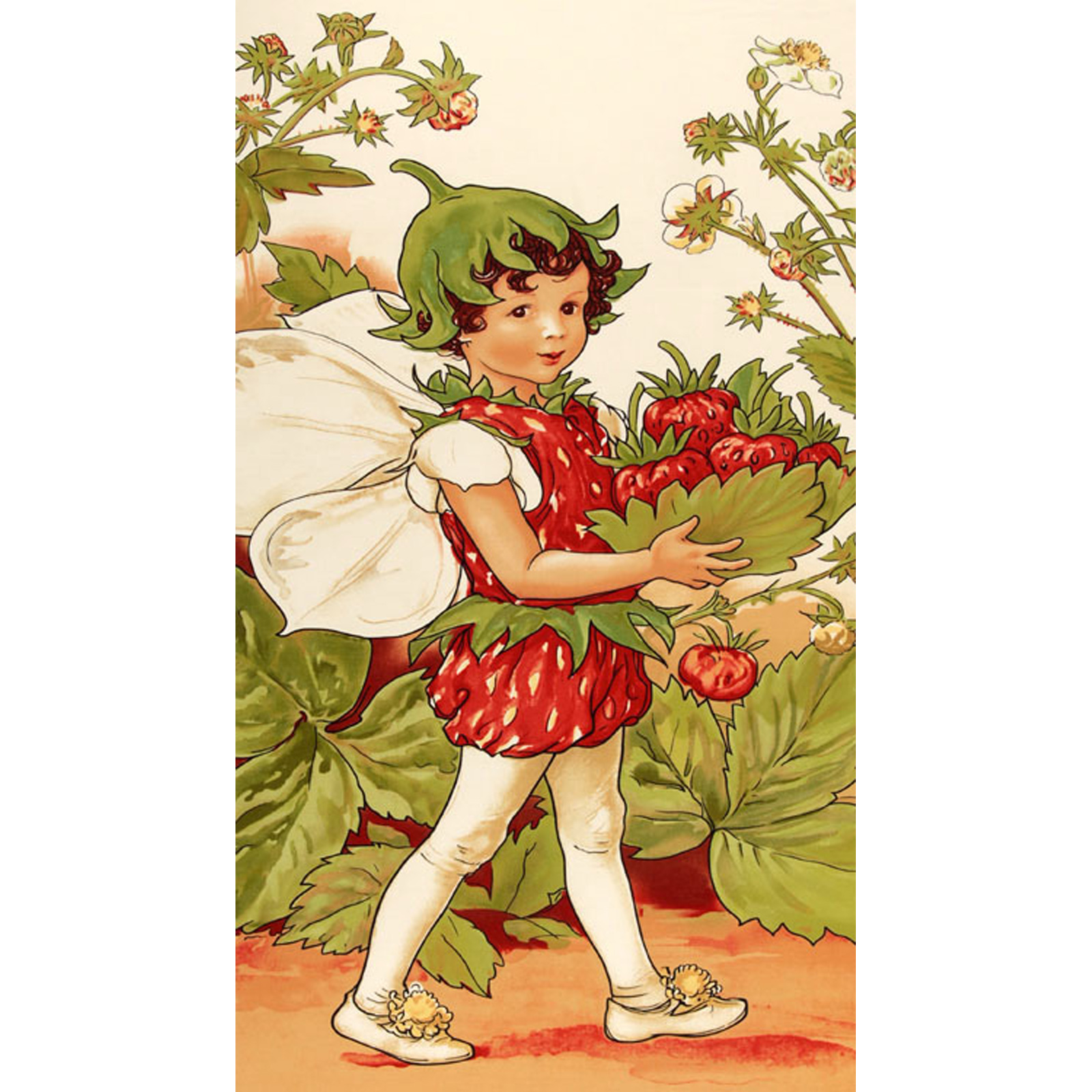 Michael Miller Strawberry Fairy Panel Multi Fabric