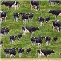 Down on the Farm Cows Green Country