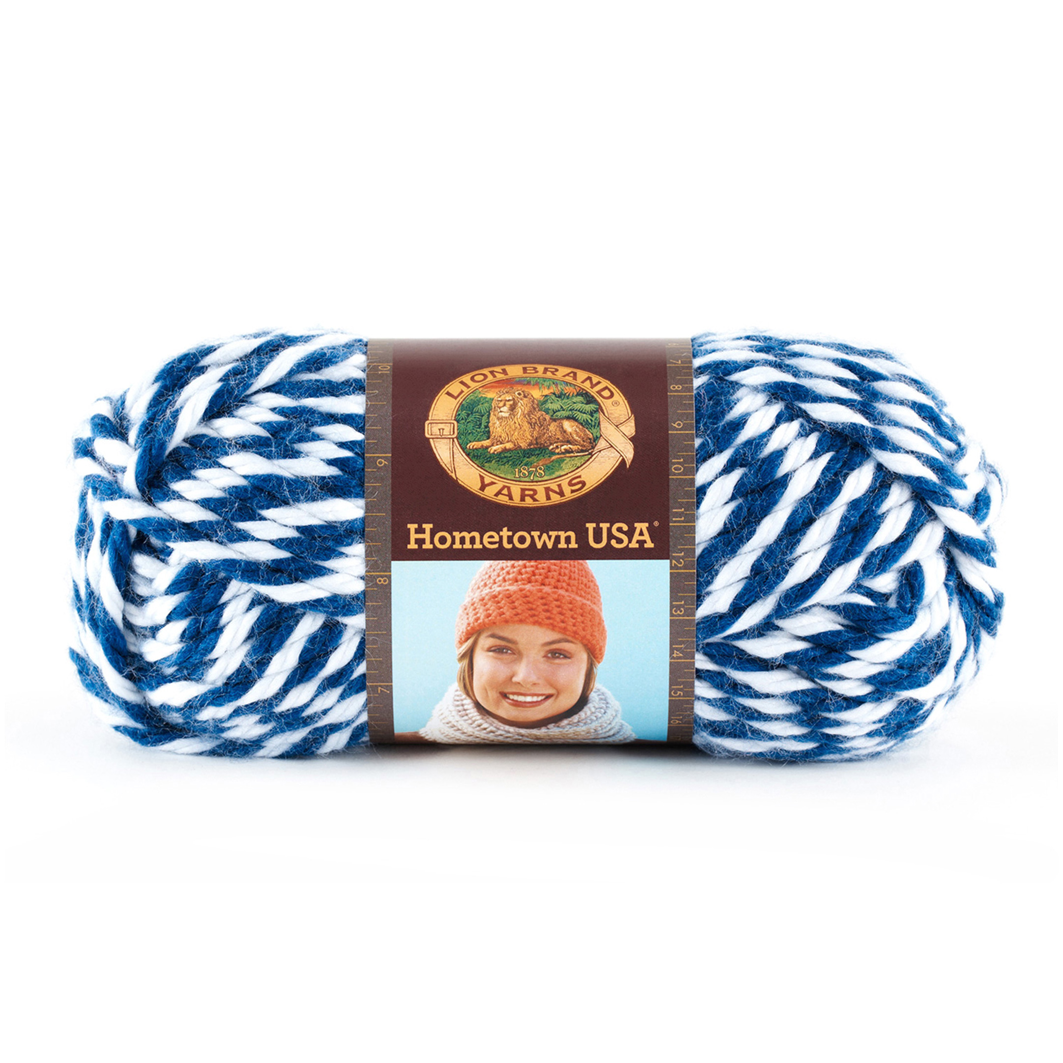 Lion Brand Hometown USA Yarn 608 Wildcats by Lion in USA