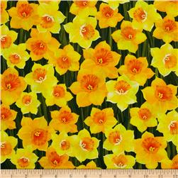 Kanvas New Bloom Daffodil Yellow Fabric