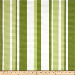 Tempo Indoor/Outdoor Spring Stripe Green