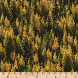 Timeless Treasures Judy Niemeyer's Reclaimed West Tamarack Trees Gold