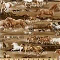 Kanvas Best of the West Wild Horse Brown
