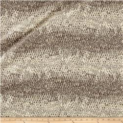 Barracuda Jacquard Platinum