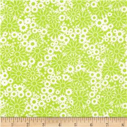 Packed Daisies Lime