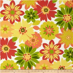 Swavelle/Mill Creek Indoor/Outdoor Orlato Citrus Fabric
