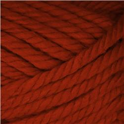 Lion Brand Hometown USA Yarn (134) Tennessee Tango
