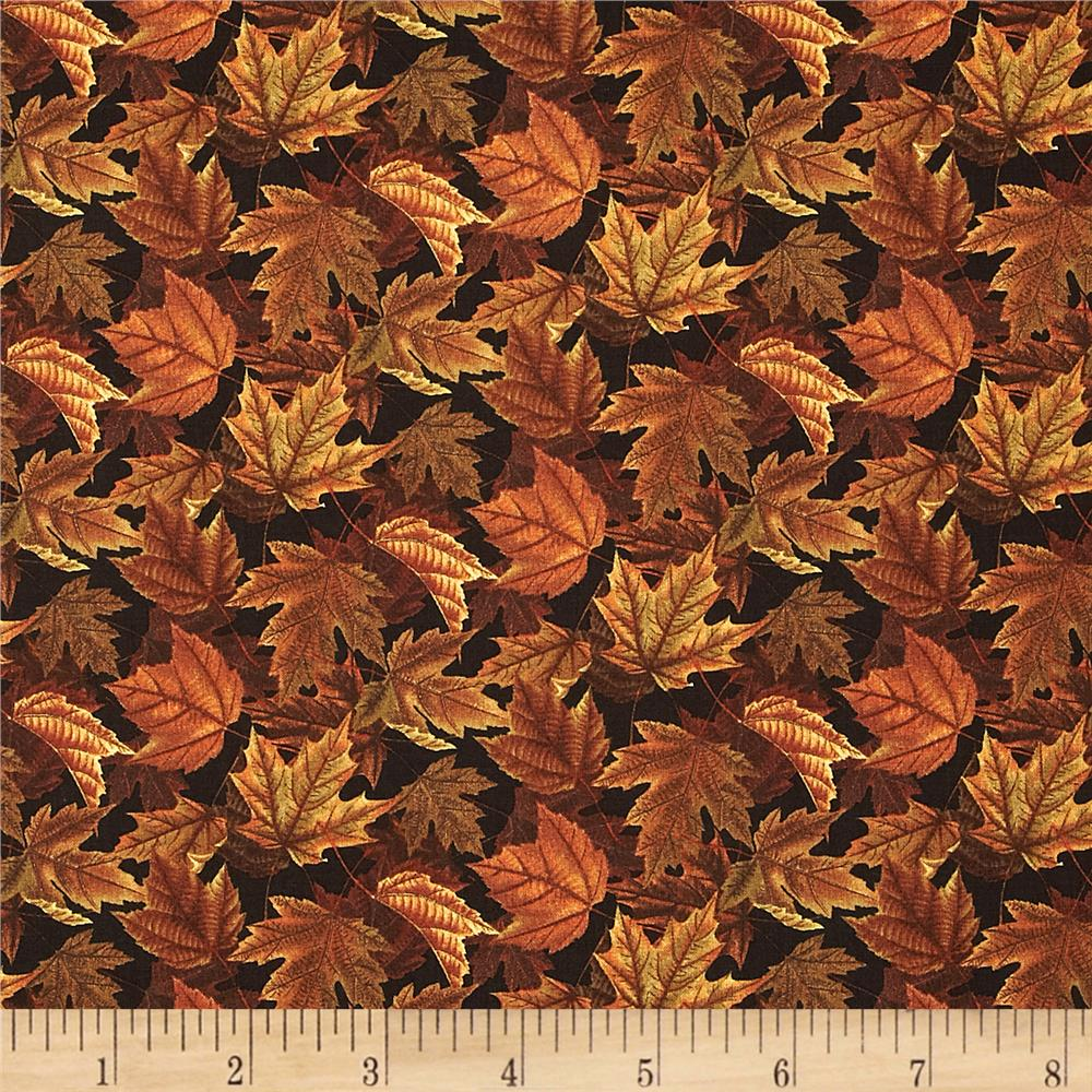 Turkey Run Autumn Foliage Red/Brown