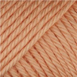 Caron Simply Soft Yarn 3oz (2728) Light Peach