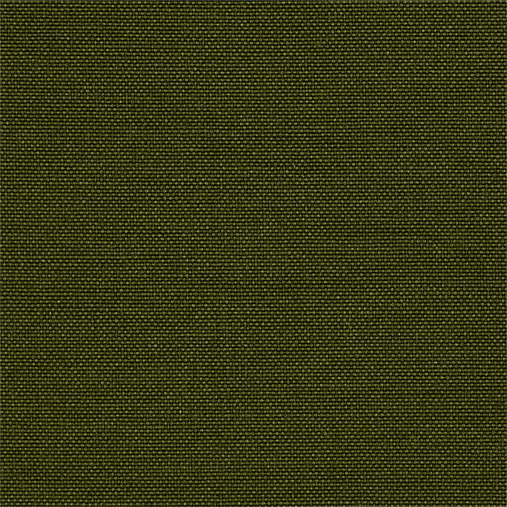Canvas Olive Green