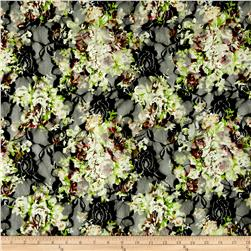 Stretch Lace Alamitos Garden  Multi