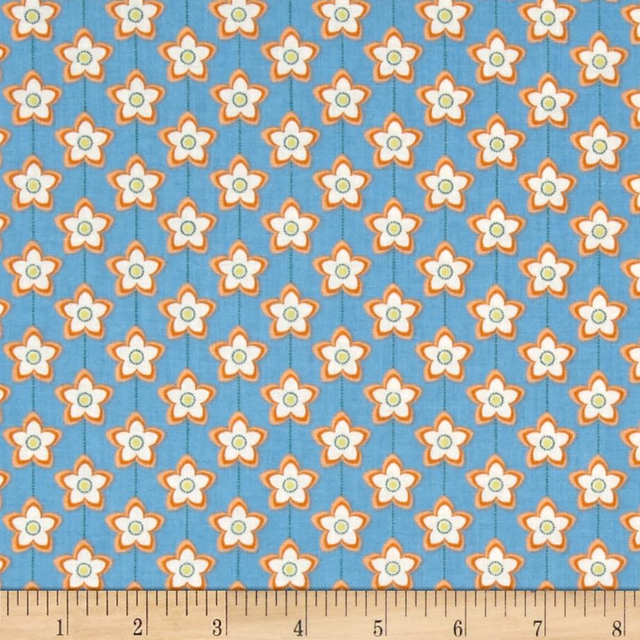 Florida State Flower Orange Blossom Orange/Blue