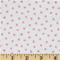 Farmhouse Blooms Mini Bloom Pink