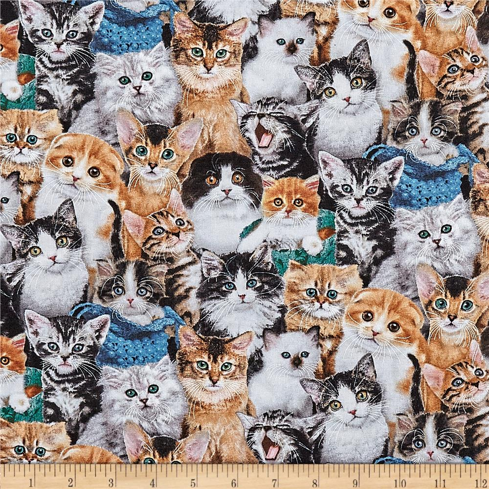 Cat Breeds Packed Cats Multi Discount Designer Fabric