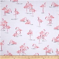 Flamingo Flamingo's White