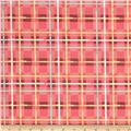 Art Gallery Mad Plaid Electric Watermelon Plaid