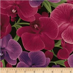 Timeless Treasures Wild Orchid Main Large Orchids Magenta