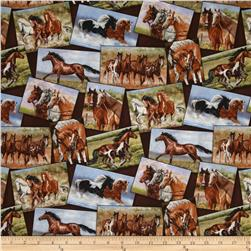 Happy Trails Postcards Horses Brown