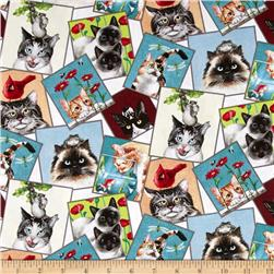 Curious Cats Tossed Postcards Cream