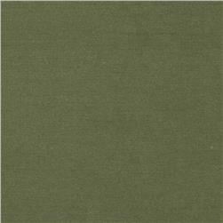 Cotton/Lycra Stretch Jersey Inch Worm Green