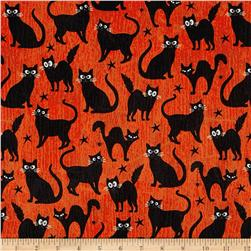 Fangtastic Glow In The Dark Black Cats Orange