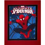 Marvel Comics Spider-Man Splatter Web Panel Red