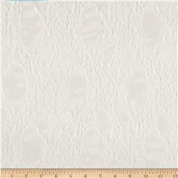 Designer Lace Scalloped White Fabric