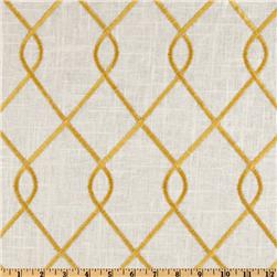 Duralee Home Embroidered Rico Yellow