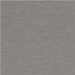 Stretch Rayon Blend Jersey Knit Light Grey