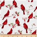 Winter Cardinals Small Cardinals Snow White