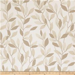 Fabricut 50074w Jenny Vine Wallpaper Umber 01 (Double Roll)