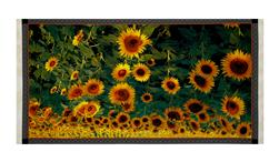 "Digital Tuscan Sunflower 24"" Panel Multi"