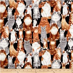 Kanvas Kitty Galore Cats Meow Black Fabric
