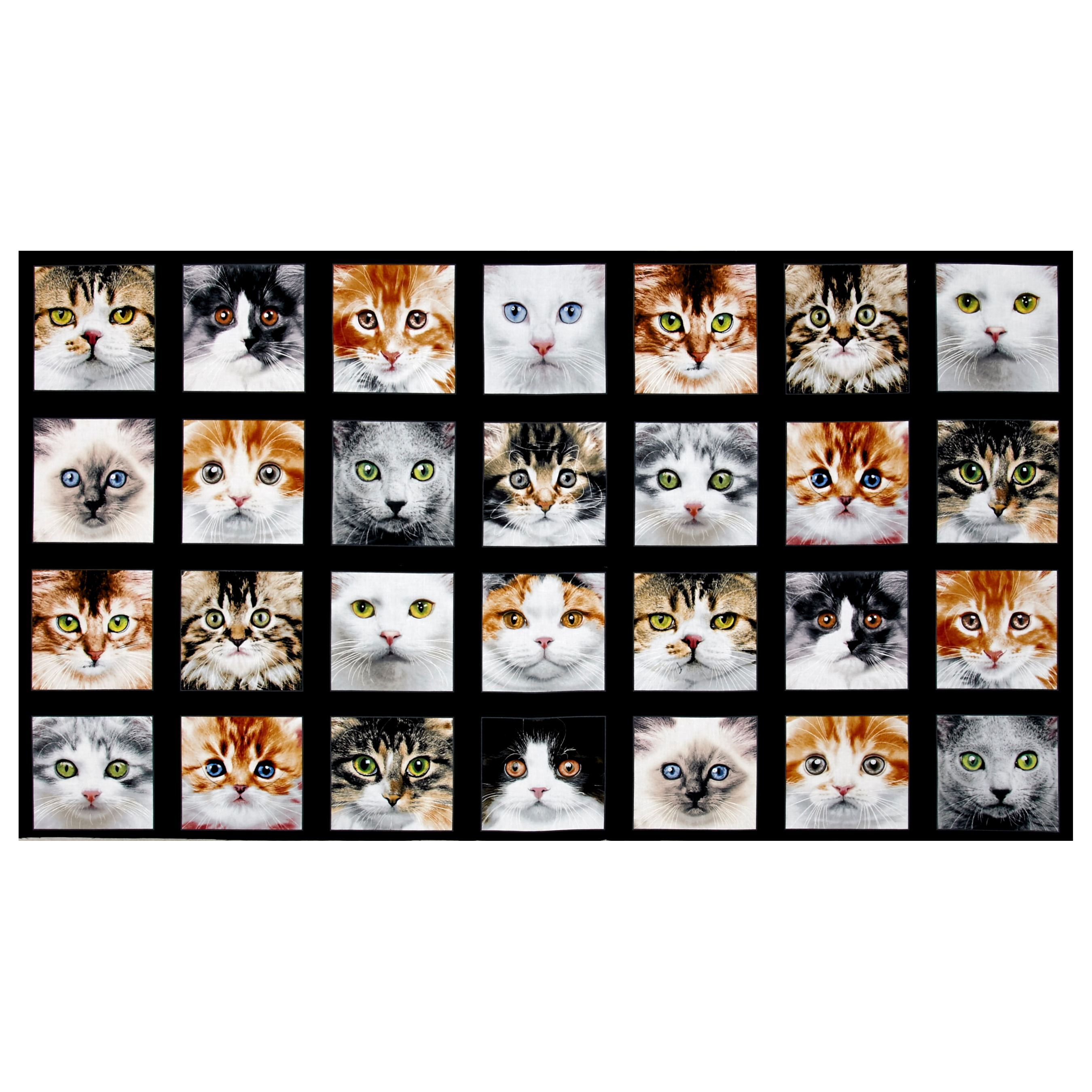 Adorable Pets Cats 23'' Panel Multi Fabric 0467101