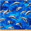 Island Sanctuary 2 Medium Dolphins Ocean