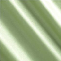 China Silk Polyester Lining Sage Fabric