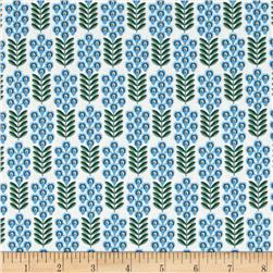 Texas State Flower Bluebonnet White/Green/Blue
