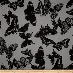 Black & White Butterflies Charcoal