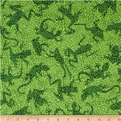 Rainforest Romp Frogs Green
