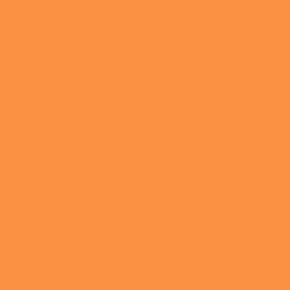 Contennial Solids Orange