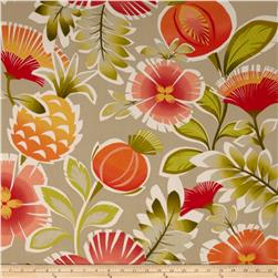 P Kaufmann Indoor/Outdoor Calypso Tangerine Fabric