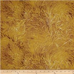Lion Grass Brown