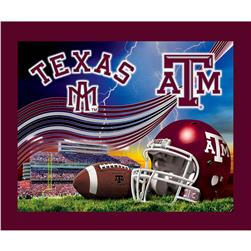 Collegiate Fleece Panel Texas A&M University Maroon
