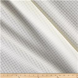 Mesh Double Knit Ivory