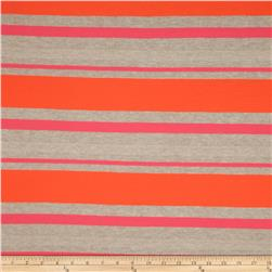 Designer Jersey Knit Stripes Bright/Cream/Gold