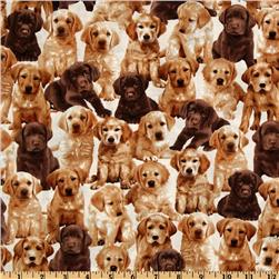 Kanvas Pedigree Dogs Pups Cream Fabric