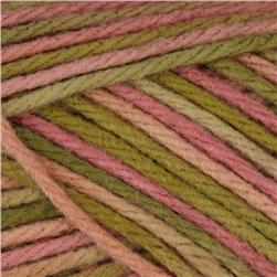 Caron Simply Soft Yarn Paints (0002) Rose Garden