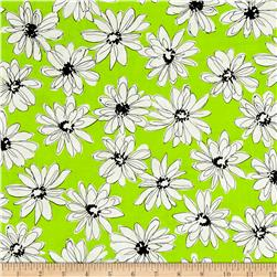 Shadows Paintbox Mini Daisy Lime