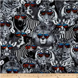 Kanvas On the Wildside II Wildcats Black